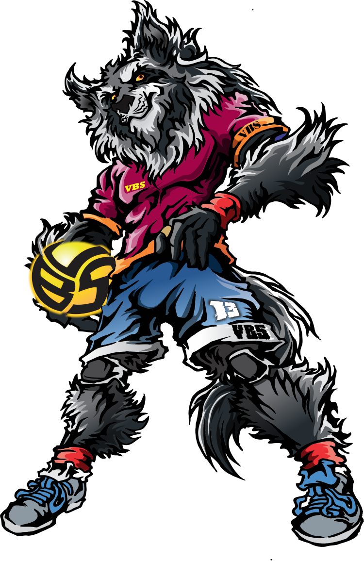 Learn advanced on-and-off-the-court tactics that will get the coach to notice you on improveyourvolley.com. (pictured Whistler the Wolf Volleybragswag hitter)
