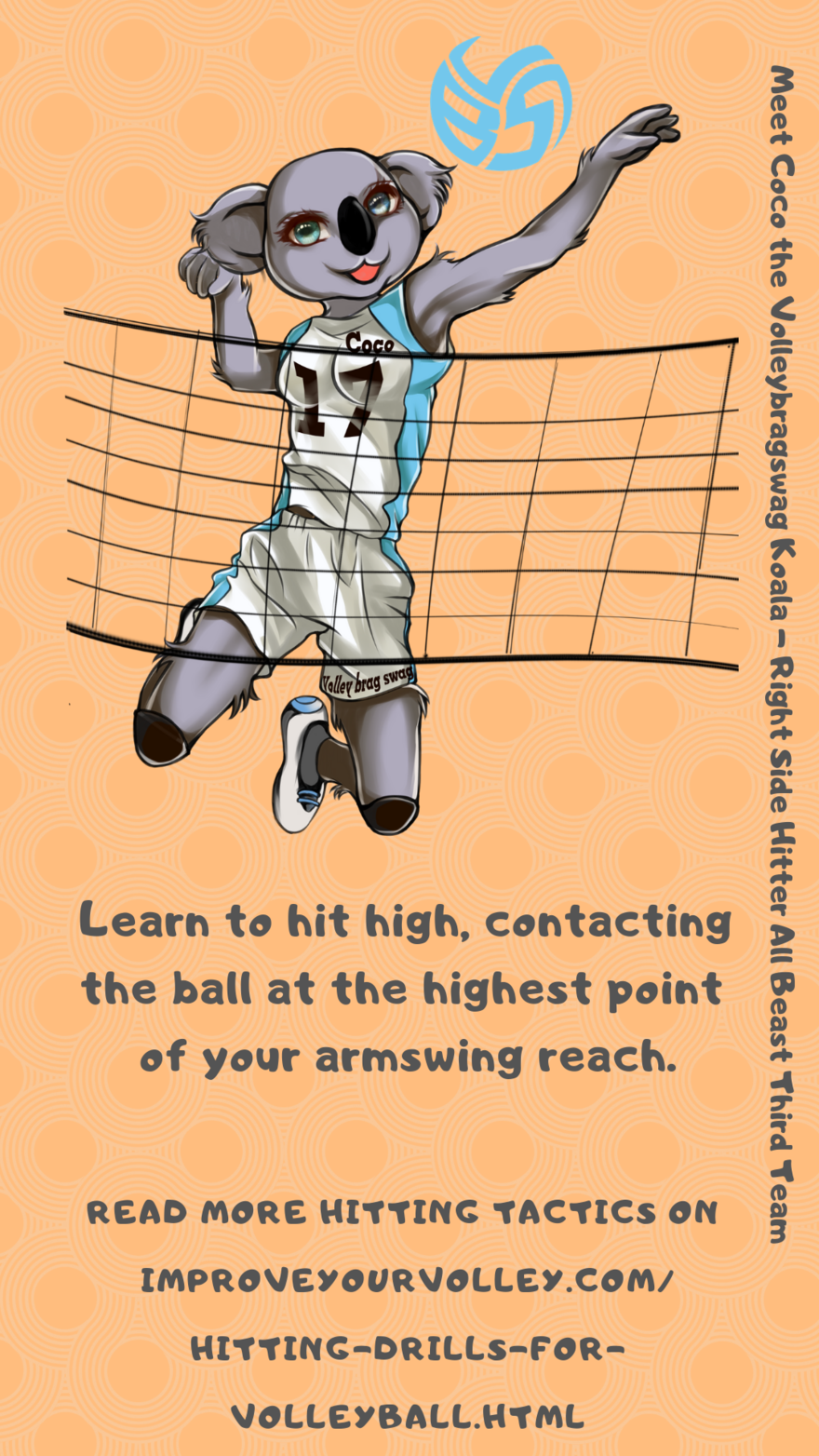 Hitting Tactics: Learn to hit high contacting the ball at the top of your armswing reach and at the highest point of your vertical jump.