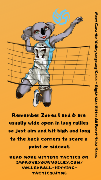 Hitting Tactics: Remember Zone 1 and Zone 6 are open during long rallies