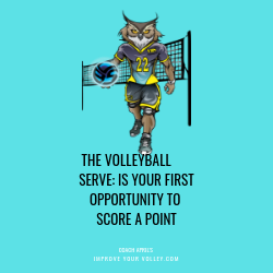 The Volleyball Serve Is Your First Opportunity To Score A Point: Coach April's Volleyball Serving Tips: Improve Your Volley.com
