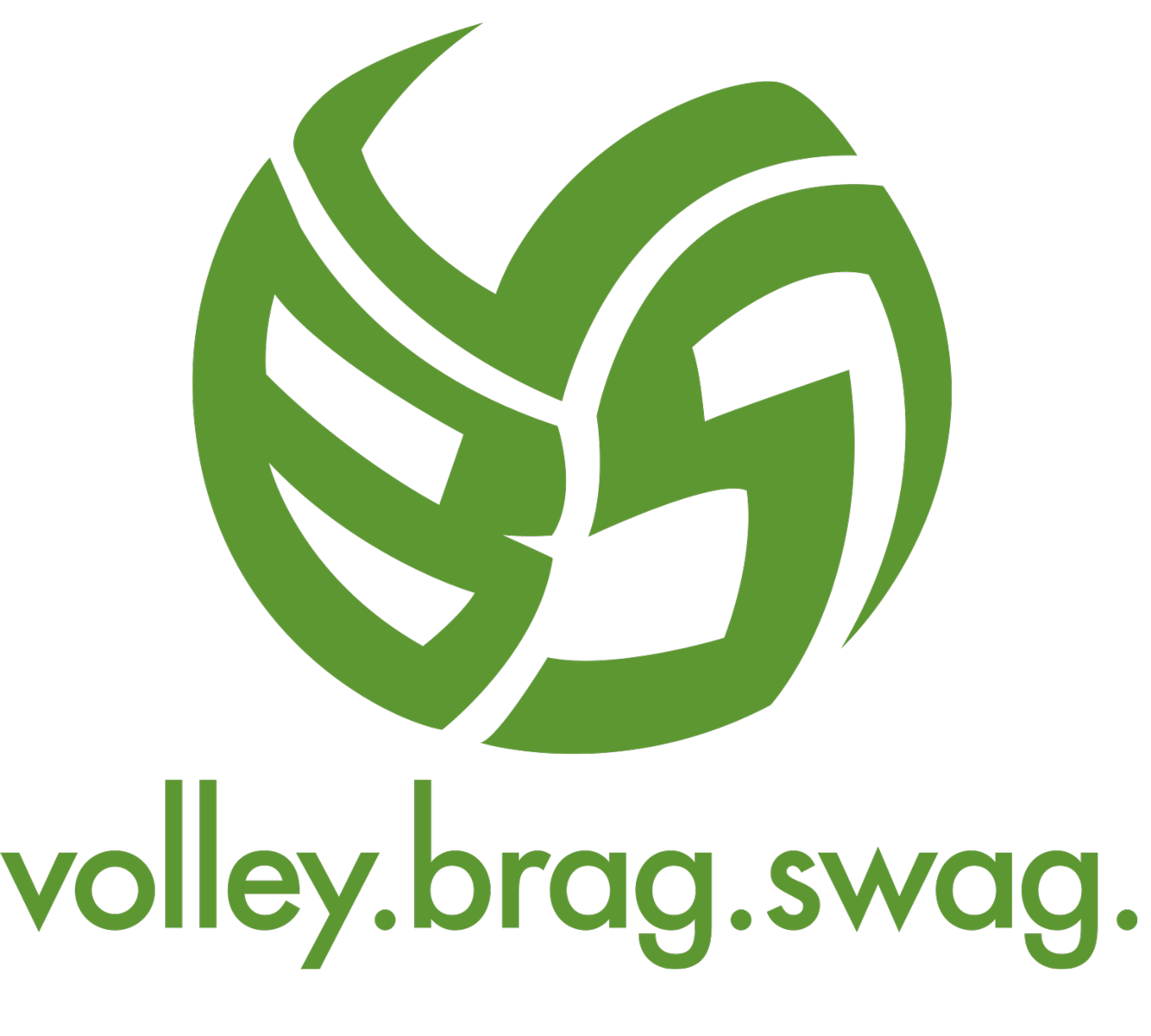 The Volleybragswag Volleyball TShirt Logos