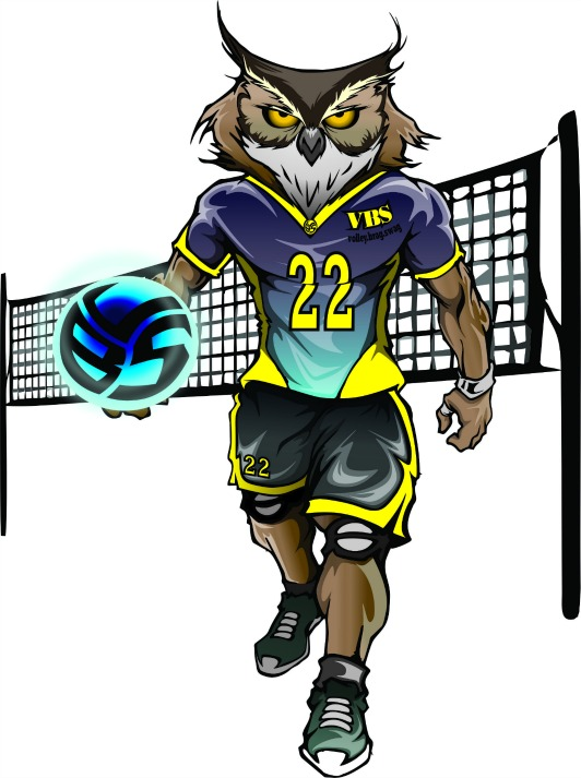 Meet Ollie the Owl  Opposite Hitter Volleybragswag All Beast Third Team