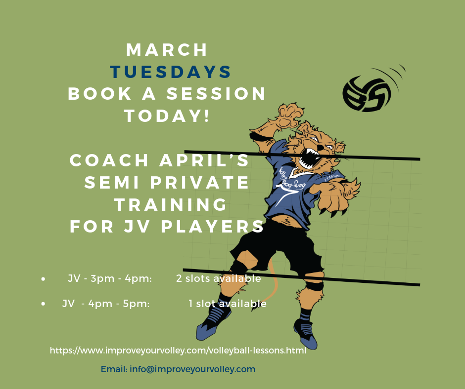 Semi Private Volleyball Training Lessons with Coach April on Tuesdays in March