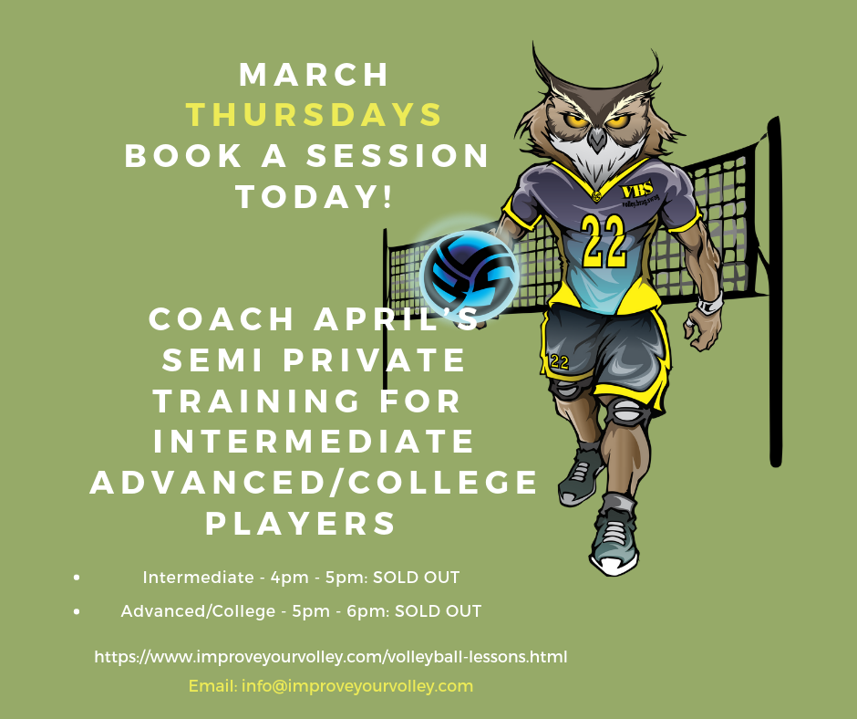 Semi Private Volleyball Training Lessons with Coach April on Thursdays in March