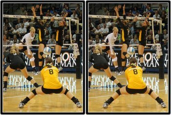 Volleyball Positions: Wichita State Shockers Libero in Defense  Photo by Michael E. Johnston