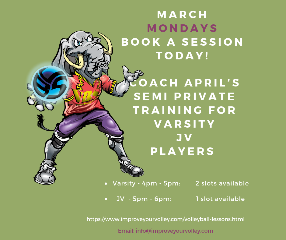 Semi Private Volleyball Training Lessons with Coach April on Mondays in March