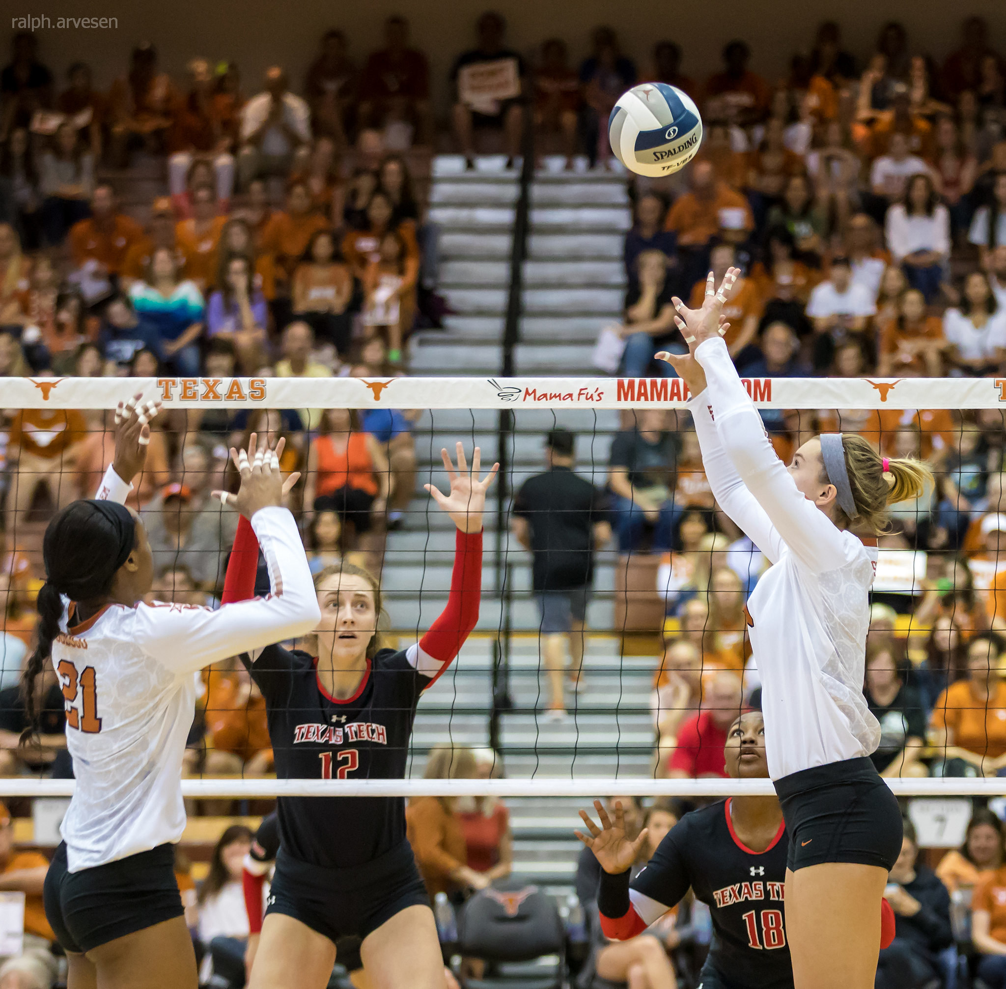 Longhorns Texas setter about to set a volleyball to her middle hitter. (Ralph Aversen)