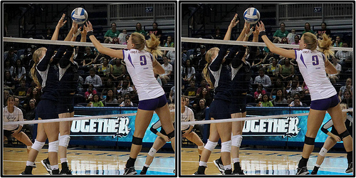 Blockers volleyball: Rice Blockers Sealing The Net (Photo Michael E. Johnston)