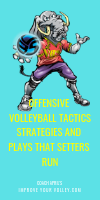Offensive Volleyball Tactics Strategies and Plays That Setters Run by April Chapple