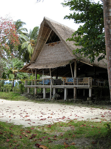 Outdoor Volleyball Court: Net and Poles Thatched Hut With Court in the Front Yard by XDive