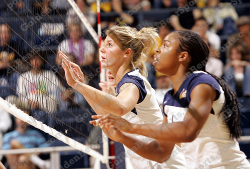 blocking in volleyball: Cal Bears Watching Hitters In Ready Blocking Position (Photo Avinash Kunnath)