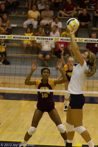 set-a-volleyball: Michigan Volleyball Setter  Photo by Joy van Buhler