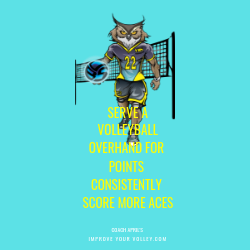 Serve A Volleyball Overhand For Points Consistently Score More Aces by April Chapple