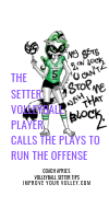 The Setter Volleyball Player Calls The Plays To Run The Team's Offense by April Chapple