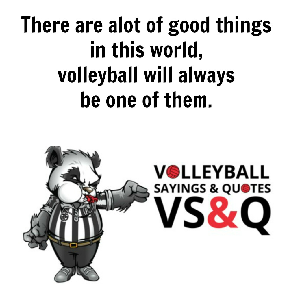 VSQ - Volleyball Quotes and Sayings There alot of good things in this world.