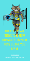The Volleyball Serve Toss How Consistent Is Your Toss Before You Serve by April Chapple