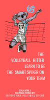 The Volleyball Hitter: learn How To Be The Smart Spiker on your Team by April Chapple