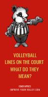 Volleyball Lines on the Court, What Do They Mean? by April Chapple