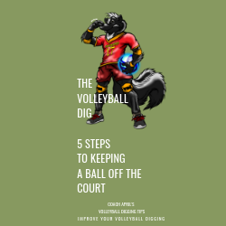 The Volleyball Dig 5 Steps To Keeping A ball Off The Court by April Chapple