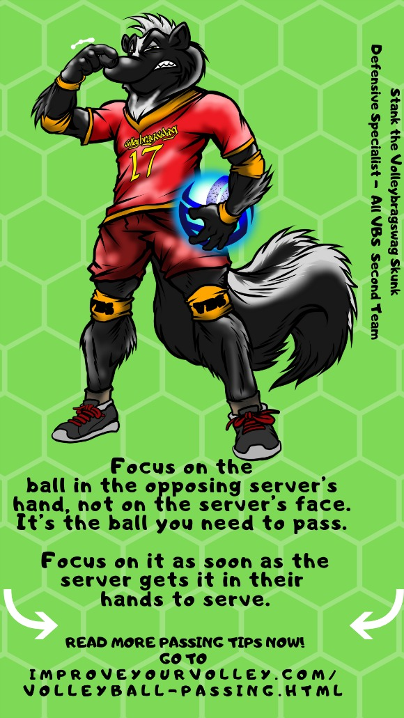 Improve Your Passing Tips: Focus on the ball in the opposing server's hands not on the server's face. Its the ball you have to pass.
