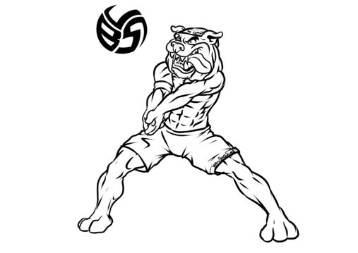 Volleybragswag Dog Coloring Pages