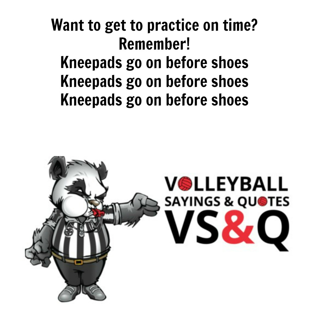 VSQ - Volleyball Quotes and Sayings Kneepads before Shoes