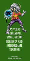 Las Vegas Volleyball Small Group Beginner and Intermediate Training