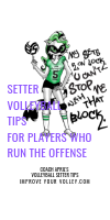 Setter Volleyball Tips For Players Who Run The Offense by April Chapple