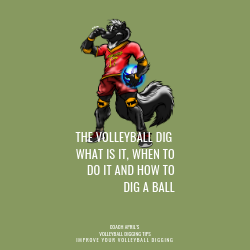 The Volleyball Dig: What Is It, When To Do It and How To Dig A Ball