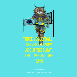 Three Volleyball Serves To Know About About The Float, The Jump and The Spin by April Chapple