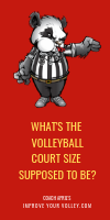 What's The Volleyball Court Size Supposed To Be? by April Chapple