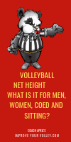 Volleyball Net Height: What is it for Men, Women, Coed and Sitting? by April Chapple