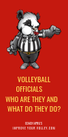 Volleyball Officials Who Are They And What Do They Do? by April Chapple
