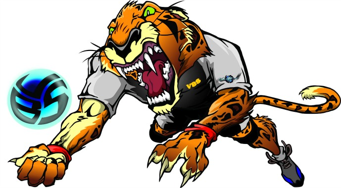 Meet Saber the Jaguar..the Volleybragswag defensive specialist.