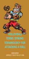 Volleyball Terms Spiking Terminology For Attacking A Volleyball by April Chapple